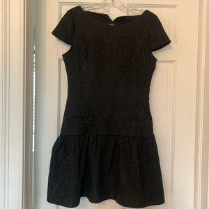 Zara W&B Collection Black Lace Cap-Sleeve Dress